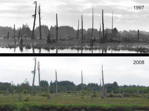 1997-vs-2008-attrition